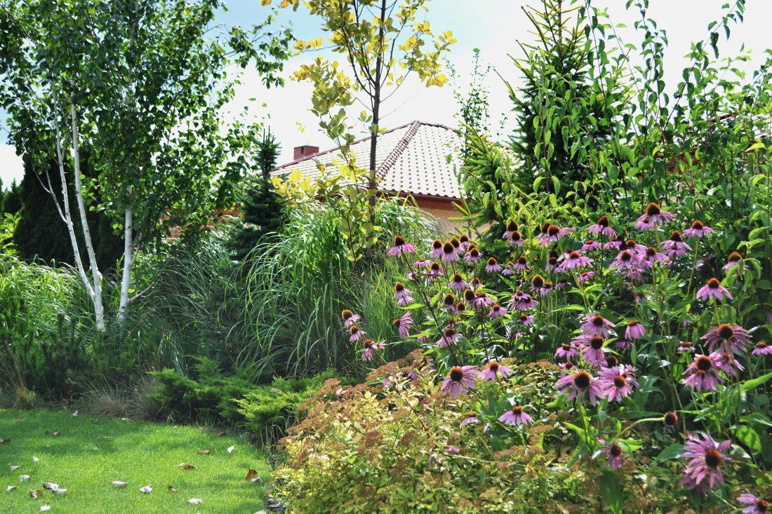 projekt ogrodu naturalistycznego duży ogród projektowanie ogrodów rockandflowerstudio rfstudio architektura krajobrazu poznań (12)