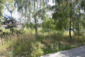 projekt nowoczesnego ogrodu, projekt ogrodu poznań, projektowanie ogrodów Poznań, pracownia architektury krajobrazu Poznań