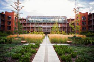 city park poznań, projekt zieleni, architektura krajobrazu, projetkowanie zieleni miejskiej, projekt ogrodu poznań, projektowanie ogrodów Poznań