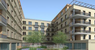 projekt zieleni - patio wewnątrz budynku - zagospdarowanie terenu zieleni publicznej